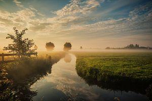 Dutch landscape with morning fog