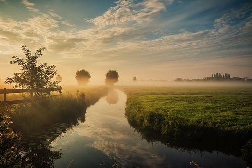 Dutch landscape with morning fog van Ilya Korzelius