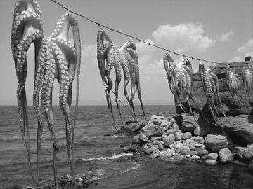 Inktvis aliens zwartwit van Nico den Hartog