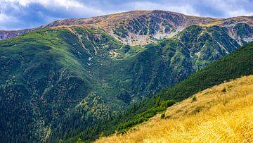 Iezer-Papusa-Gebirge in Rumänien von Jessica Lokker