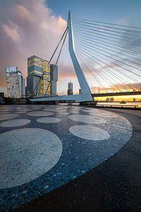 Erasmusbrug Noordereiland - Rotterdam sur