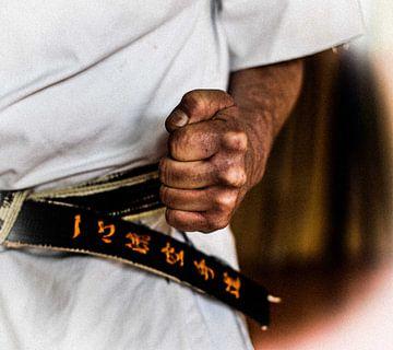 isshinryu The Fist van Tinus Tibbe