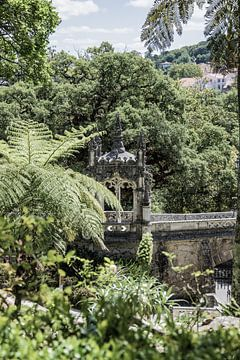 Quinta da Regaleira van Jessica Arends