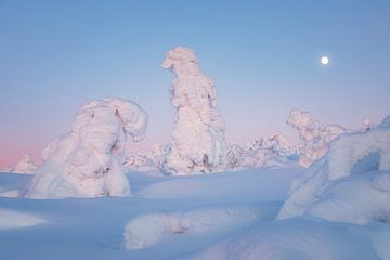 Schneegestalten in der blauen Stunde von Daniela Beyer