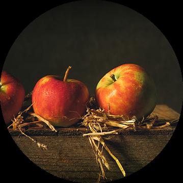 Een appel per dag... van Monique van Velzen