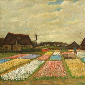 Vincent van Gogh. Bloembedden in Holland van 1000 Schilderijen