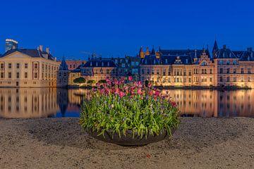 Le Hofvijver à La Haye avec des tulipes sur Dennisart Fotografie