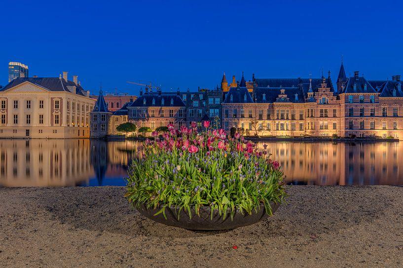 Der Hofvijver in Den Haag mit Tulpen von Dennisart Fotografie
