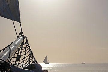 Sailing home van Yvonne Steenbergen