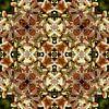 Go West van Frans Blok thumbnail