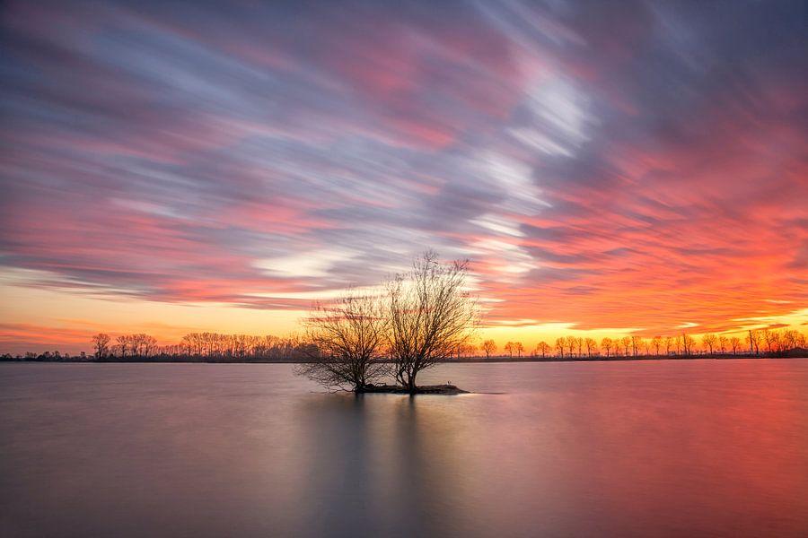 Waterplas met boom tijdens zonsondergang van Elroy Spelbos