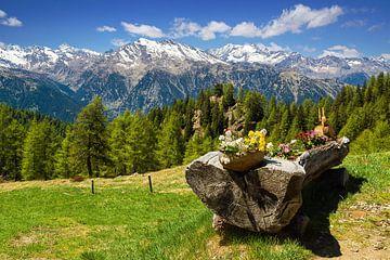 Berglandschaft Südtirol am Meraner Höhenwewg von