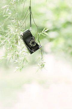 Oude camera van
