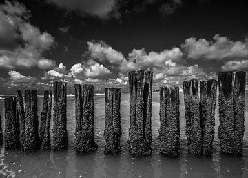 Palen in zee4 van Peter Heins