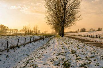Winters polder landschap van Ruud Morijn