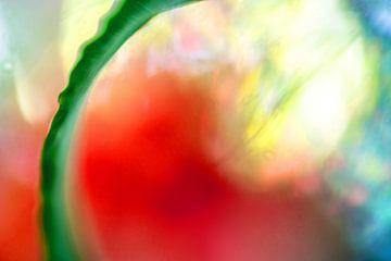 Kleur!06 van Simone Langeweg