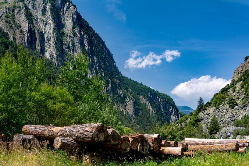 De Zwitserse bergen van Ton de Koning