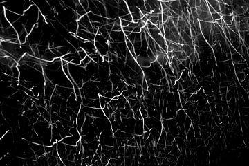 Elektrische Bewegung von Leon van Gool