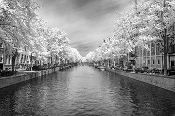 De Amsterdamse Keizersgracht in infrarood