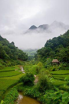Bergdorf in Pu Luong, Vietnam von Ellis Peeters