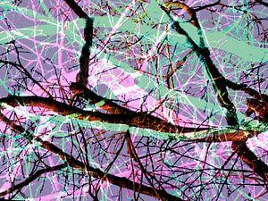 Verhaallijnen van een boom 2