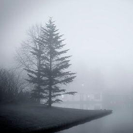 Mist aan De Oeverlanden van Jan van der Knaap
