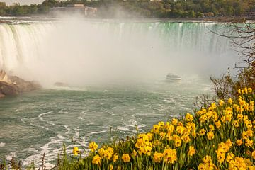 Niagara Falls van Stefan Verheij