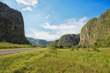 tropische scène rond Vinales Valley in Cuba, een eiland in de Caribische zee van Tjeerd Kruse
