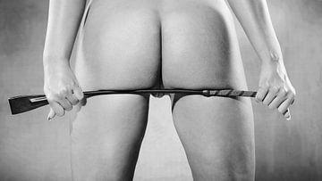 Schöne nackte Frau mit schönem Gesäß.  #K2522 von william langeveld