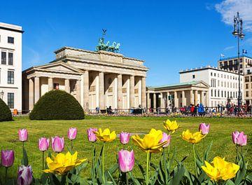 Brandenburger Tor met tulpen