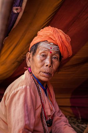 Vrouwelijke Sadhu op het hindoestaanse  Kumbh Mela festival in Haridwar India van Wout Kok