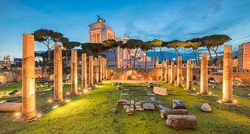 The Forum - Rome, Italy van Bas Meelker