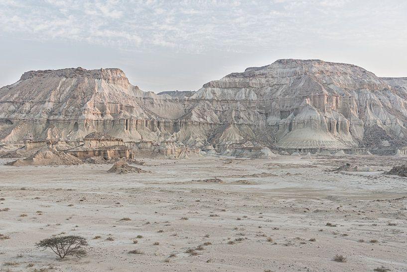 Boom in een ruig landschap | Iran van Photolovers reisfotografie