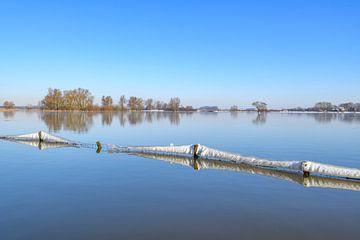 Eisige Landschaft am Fluss IJssel an einem kalten Wintermorgen von Sjoerd van der Wal