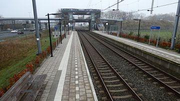 station Hoevelaken van Wilbert Van Veldhuizen