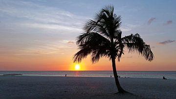 Sonnenuntergang auf Aruba in der Karibik von Nisangha Masselink