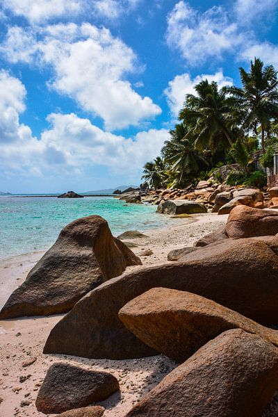 Beach life van Daphne Elderenbos