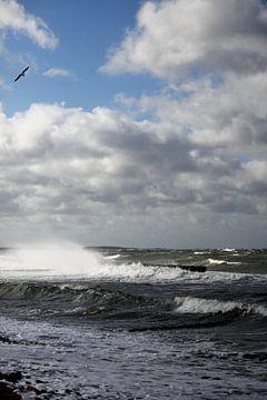 Ostseesturm von Ostsee Bilder