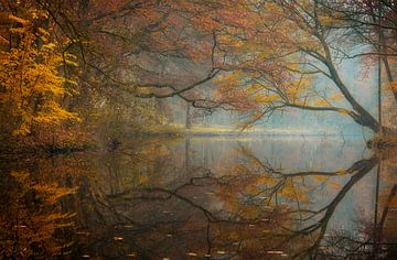 herfst ochtend van Axel Drenth
