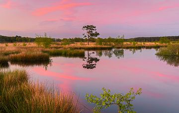 Zonsondergang bij Holtveen in Nationaal Park Dwingelderveld van Henk Meijer Photography