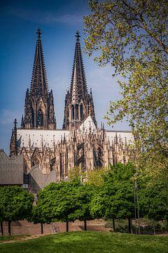 Kölner Dom von Freddy Hoevers