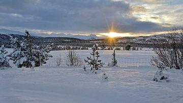 Winter in Norwegen von Michael Schreier