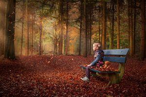 Betoverende herfstbos    van
