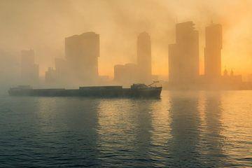 La tête du sud dans le brouillard sur Ilya Korzelius