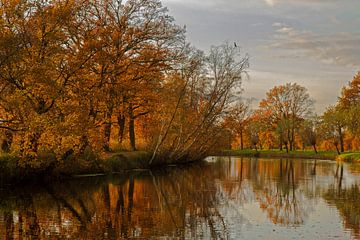 Herfst von Joop de Lange