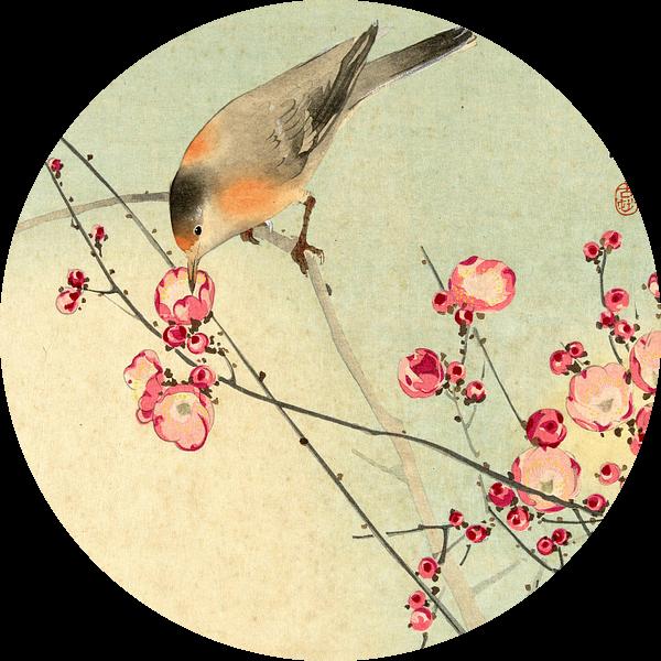 Zangvogel op bloesemtak, Ohara Koson van 1000 Schilderijen