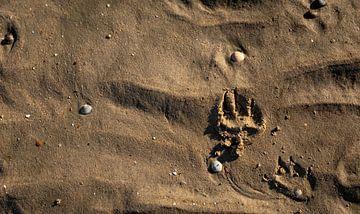 Hondenpoot in het zand 2 van Percy's fotografie