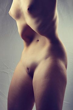 Körper - Frau nackt oder nackt mit großem sinnlichen Körper. Foto mit Filmkornfinish #0174 von william langeveld