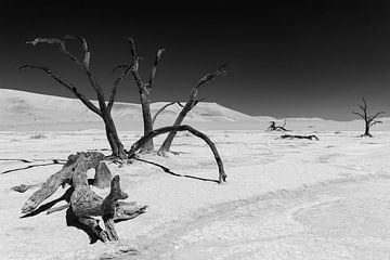 Sossusvlei Namibië (13) Zwart wit van Adelheid Smitt