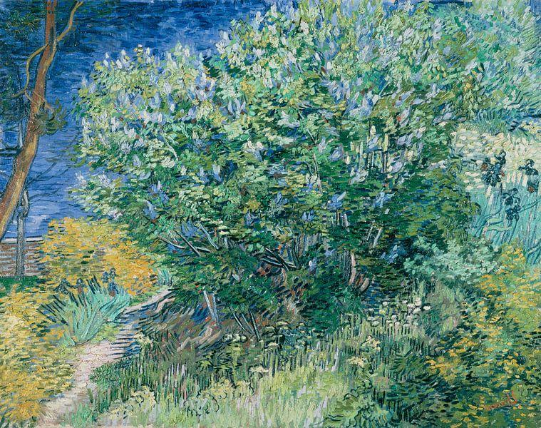 Fliederbusch, Vincent van Gogh von The Masters